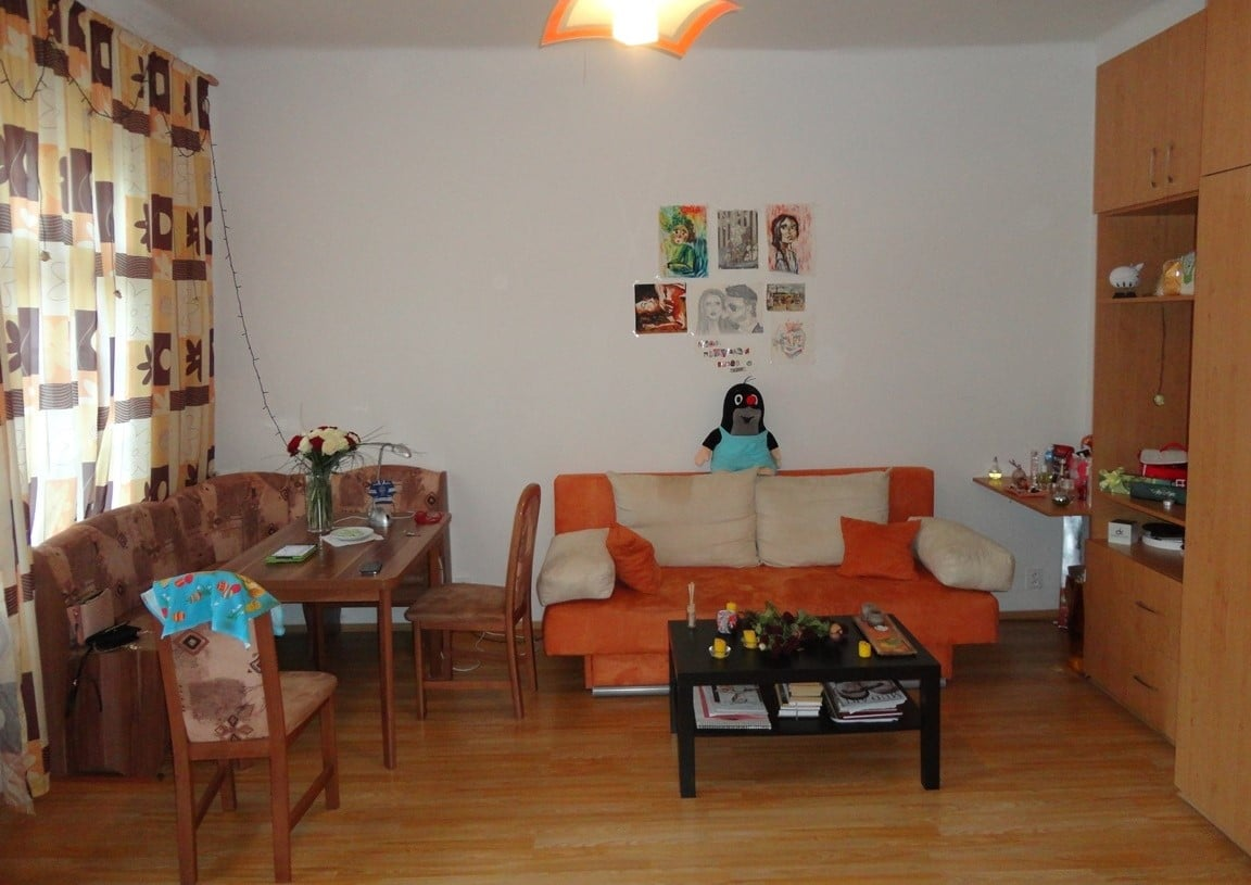 בז'יז'קוב, פראג 3, דירת חדר +KK קרובה לאוניברסיטה למכירה (3)