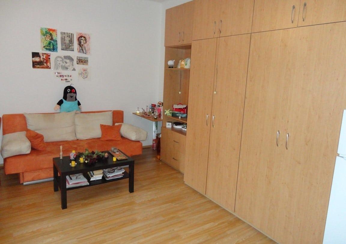 בז'יז'קוב, פראג 3, דירת חדר +KK קרובה לאוניברסיטה למכירה (6)
