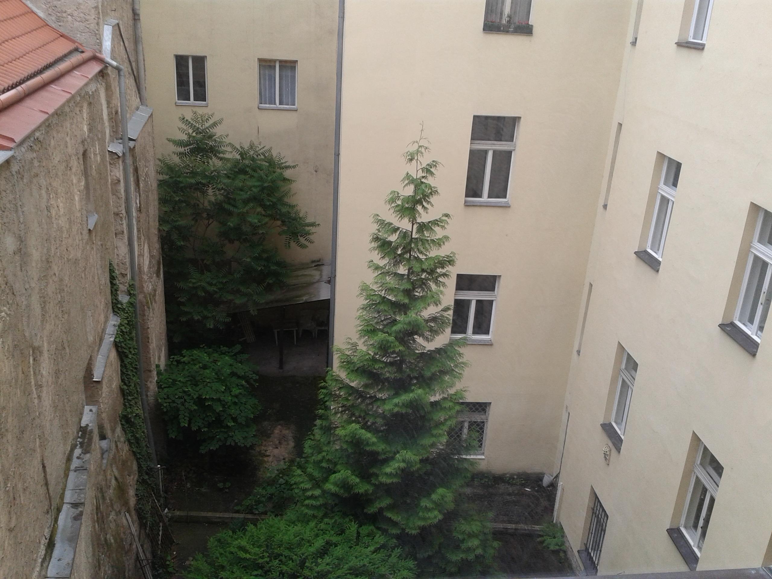 למכירה דירת 3+kk יפהפיה בפראג 1 העיר החדשה (45)
