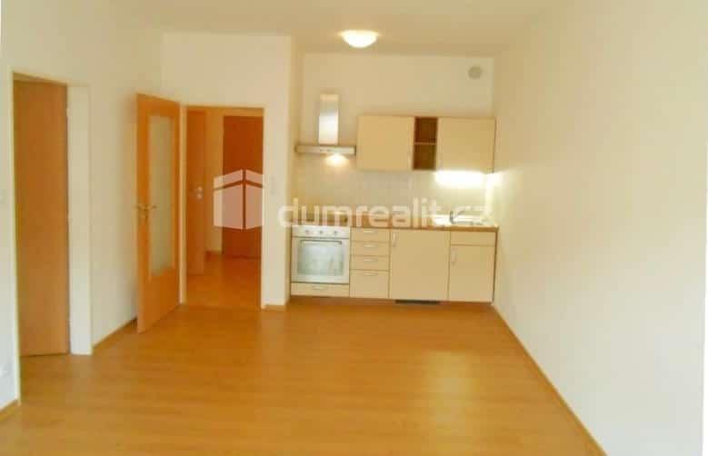 למכירה דירת 2 חדרים בשכונת ויסוצ'אני - פראג 9 (5)