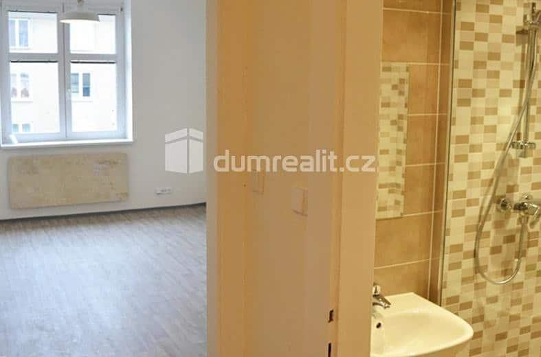 למכירה דירת 2 חדרים בפראג 3 (3)