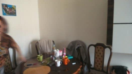 דירת 2 חדרים בקרלין (6)