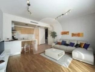 למכירה דירה משופצת ויפה - 49 מר, 2 חדרים בשכונת ז'יז'קוב (6)