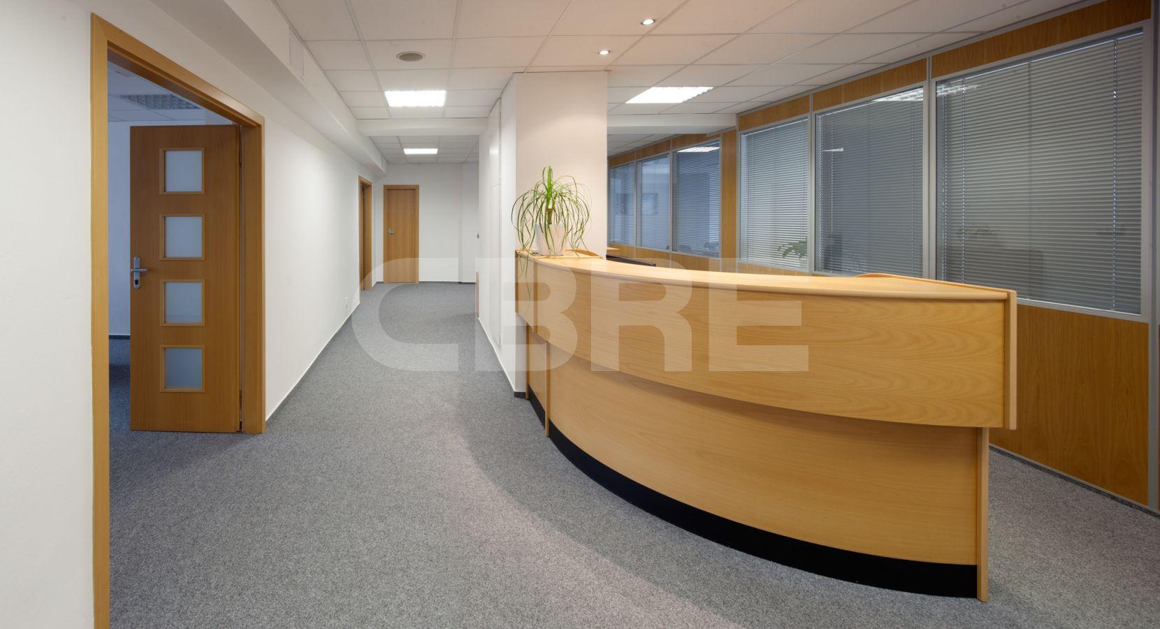 להשכרה משרד בפראג 4 בגודל 39 מר ליד הפארק (3)