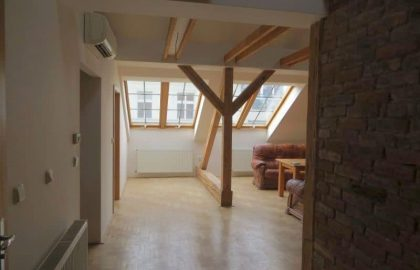 דירת 4+1 מיוחדת למכירה צמוד לכיכר ואצלב בפראג