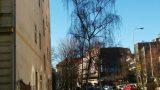 למכירה דירת 2+kk בפראג 5, שכונת סמיחוב (16)