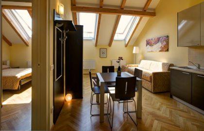 למכירה דירת 3 חדרים מפוארת מיועדת לתיירות בפראג 2