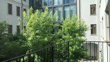 פרוייקט המגורים בית המשפט בפראג 1 - דירות יוקרה במגע איטלקי (9)