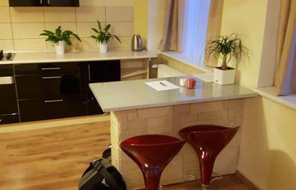 דירת 2 חדרים יפהפייה למכירה בפראג 4